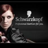 Film: Schwarzkopf ist Marketingpreistr&#228;ger 2009